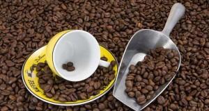 Sind Kaffeemaschinen mit Pads besser als welche mit Brühkaffee?